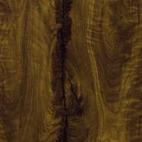 富美加木紋 3479 Black Walnut Timber swatch