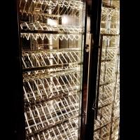 不銹鋼恒温紅酒櫃  SWR1001 a